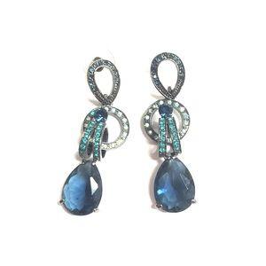 Fancy exotic deep blue earrings